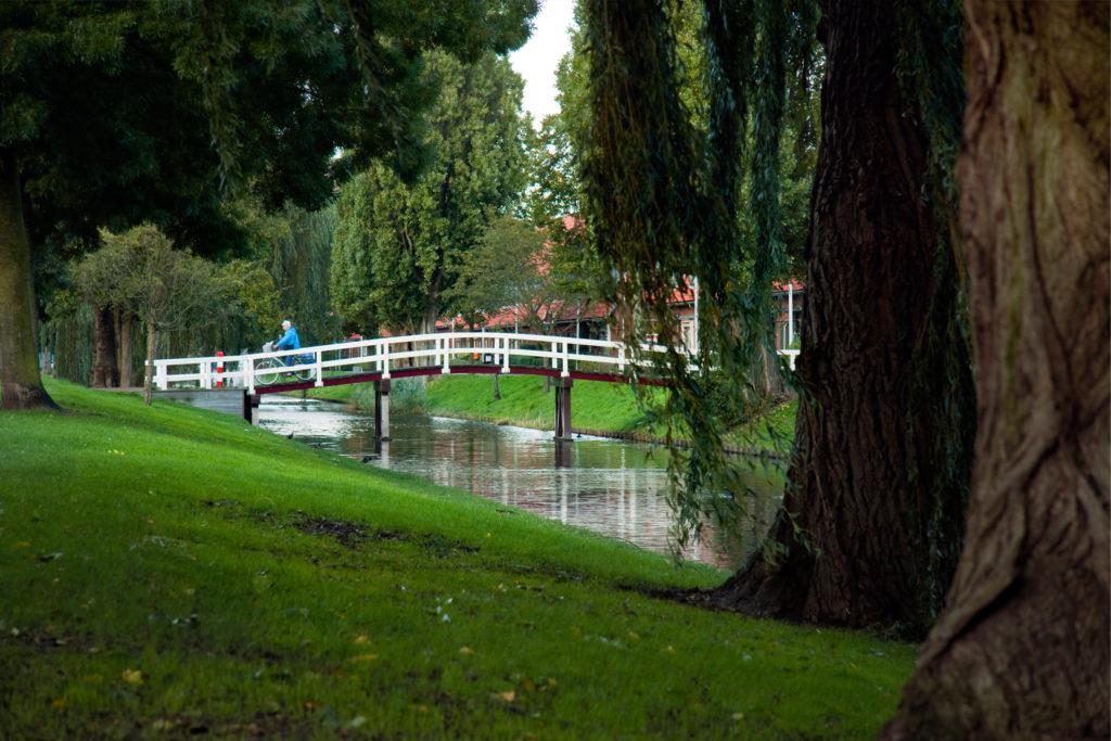 geluk en harmonie in groene oase